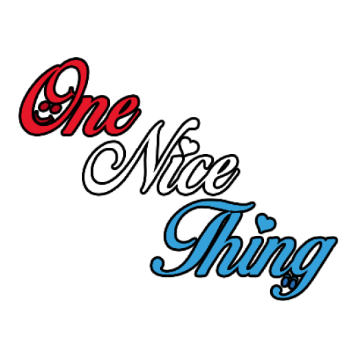 One Nice Thing